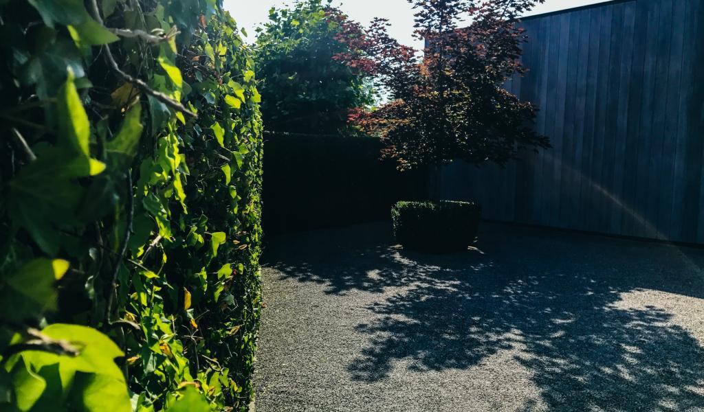Strakke tuinen in moderne architectuur